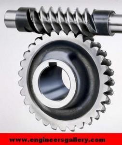 Mechanical Gear Screw Gear