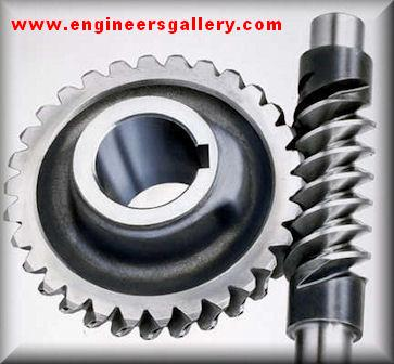 Screw Gear