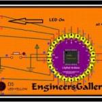 lilypad gallery