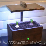 DIY automatc grow box